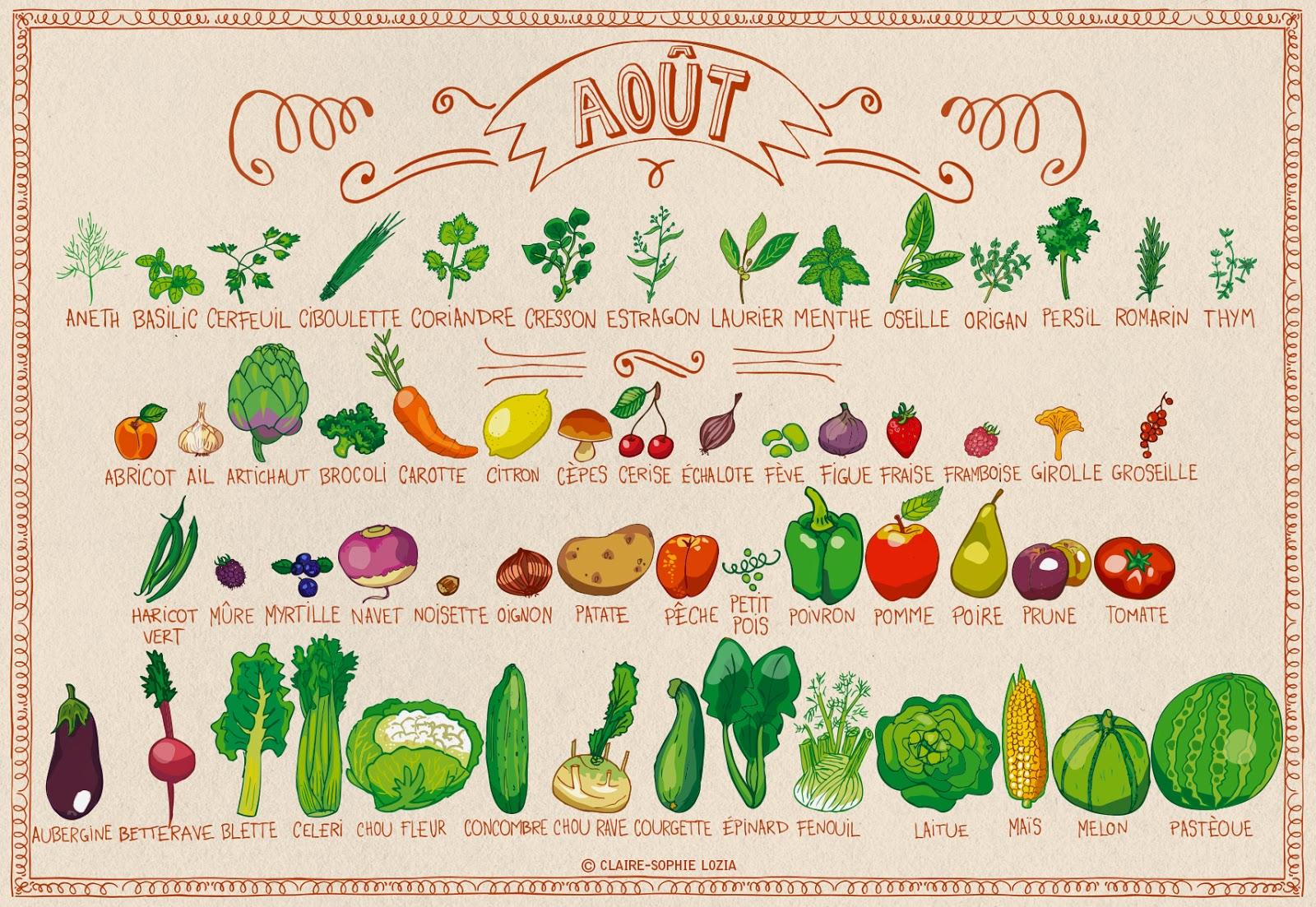 Calendrier fruits et légumes de août