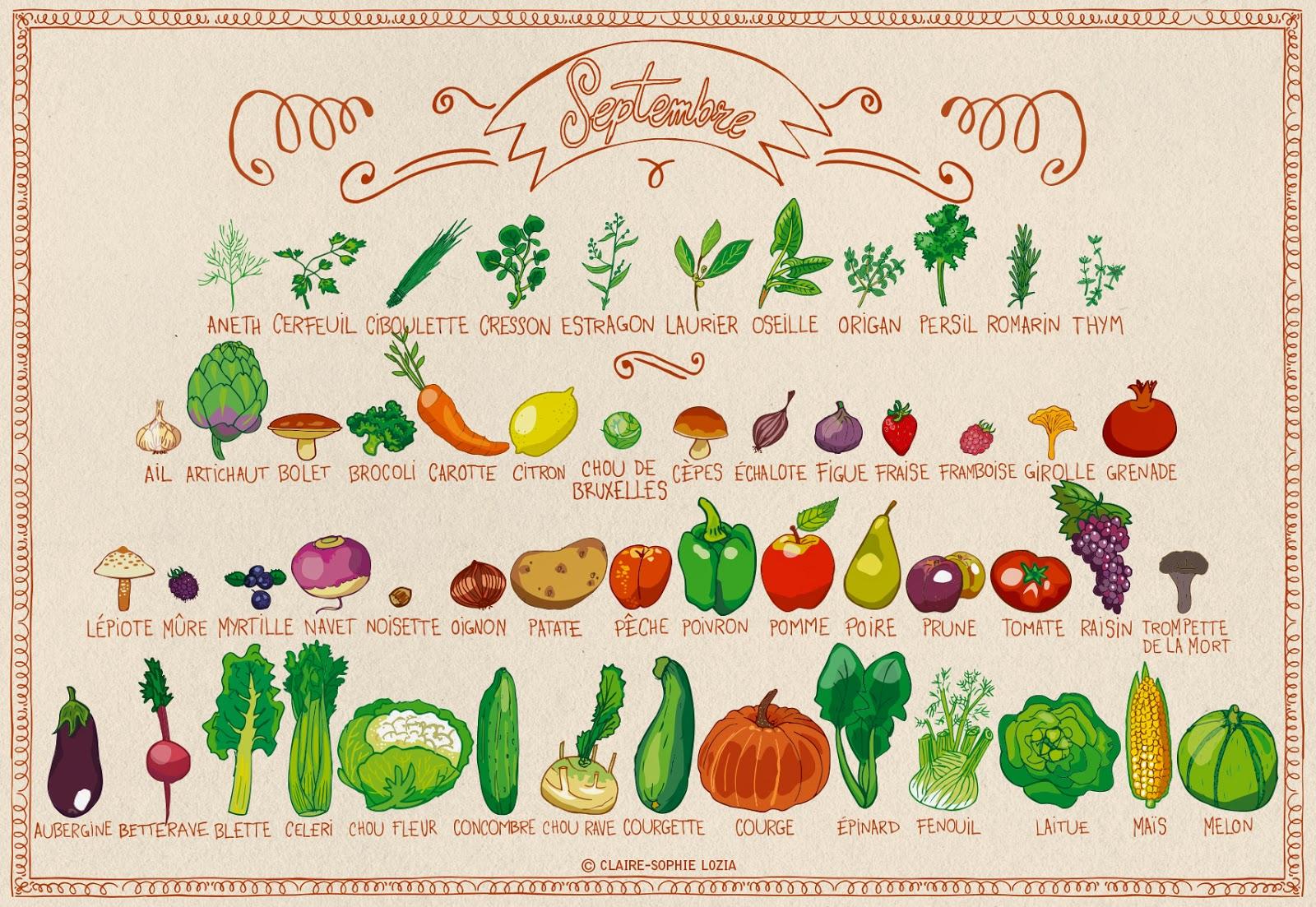 Calendrier fruits et légumes de septembre