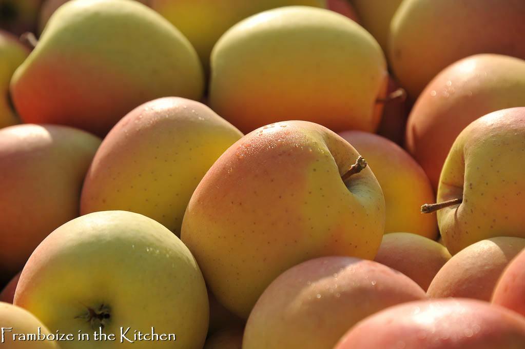 Pommes Tentations au petit jour