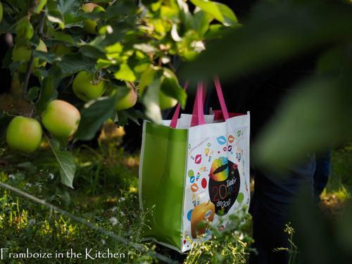 On repartira tous avec un sac rempli de pommes
