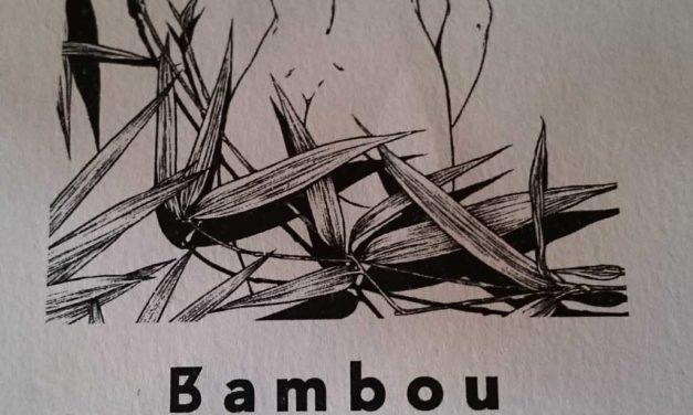 Bambou, un thaï dans le centre de Paris