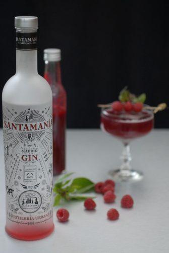 Gin tonic framboises