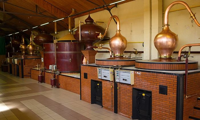 Distillation Boulard