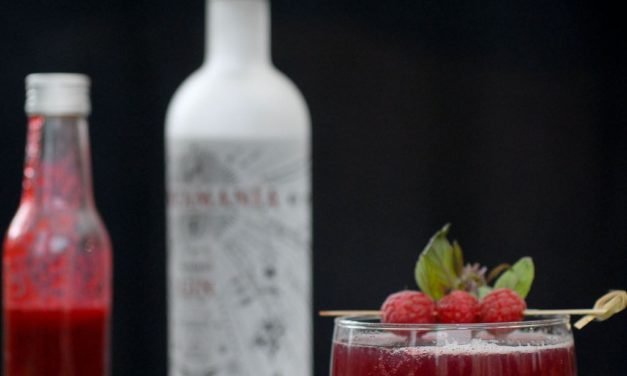 Cocktail, Gin Tonic Framboises