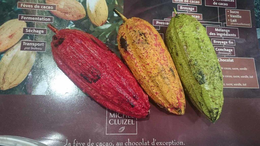 Les différentes cabosses, qui contiennent les fameuses fèves de cacao