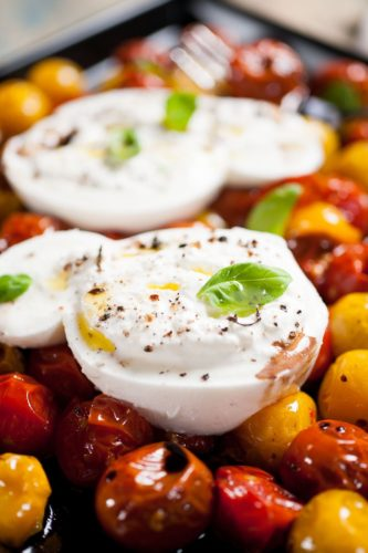 tomates rôties et mozzarella burrata di buffala