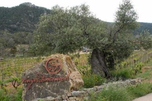 Vinges Domenech Priorat Catalogne