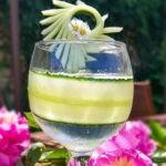 Concombre Français et gin tonic